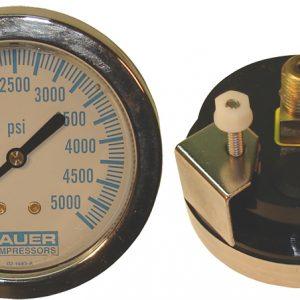 """""""S"""" Panel Mount 0-600 psi gauge"""